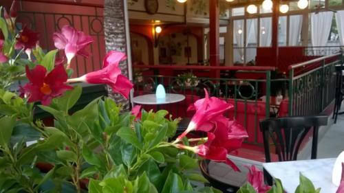 sala fiori1 sala